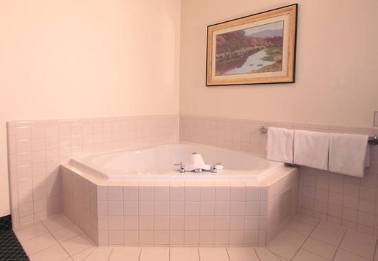 Jeffersonville, IN: King  Spa  Guest Room