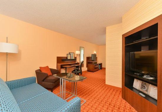 Smyrna, TN: Executive King Suite – Living Area