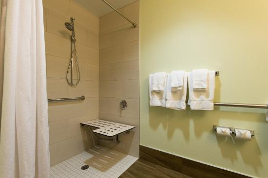 Walterboro, Güney Carolina: Handicap Accessible Roll In Shower