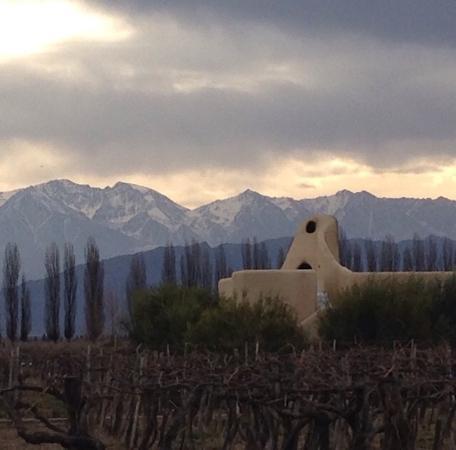 Cavas Wine Lodge: Quartos no meio dos vinhedos. Vista linda e privacidade.