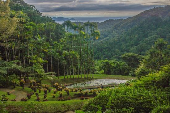 Jardin de Balata: Point de vue sur l'ouest de l'ile.