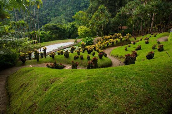 Jardin de Balata: Point de vue sur le dénivelé du jardin.