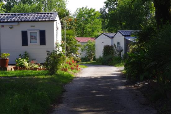 Urrugne, Francia: Une-allée-de mobile-home