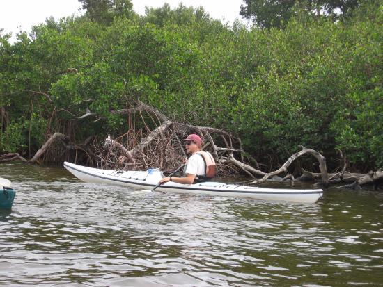 Adventure Sea Kayak: Nik our guide on the kayak tour