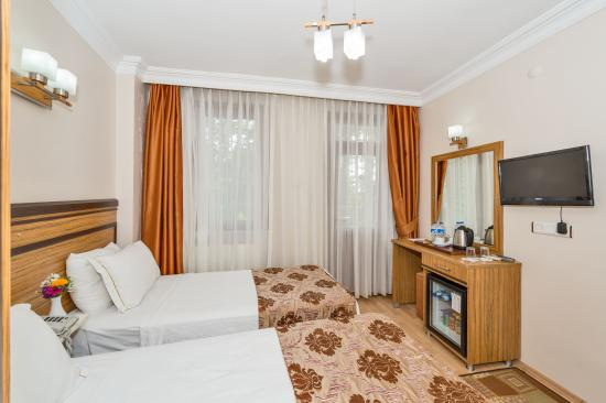 May Hotel Istanbul : Guest Room