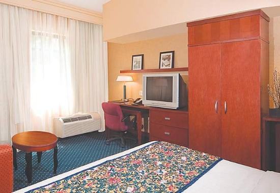 Suffolk, VA: King Guest Room with Sleeper Sofa