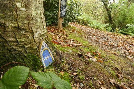 Hrabstwo Wicklow, Irlandia: Fairy door on the way to the dragonfly pond
