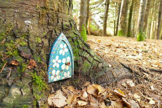 Hrabstwo Wicklow, Irlandia: Fairy door on the way to the dragonfly ponds