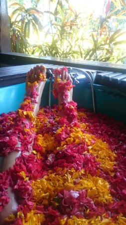 Seririt, Endonezya: Flower bath after massage!!!