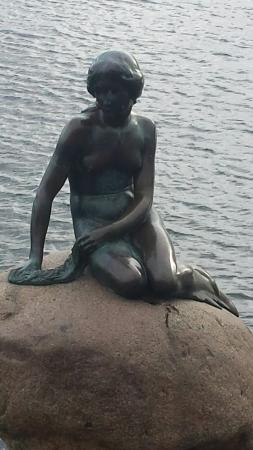 The Little Mermaid (Den Lille Havfrue): 20160131_132524_large.jpg