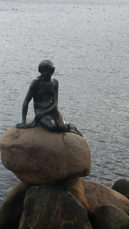 The Little Mermaid (Den Lille Havfrue): 20160131_132623_large.jpg