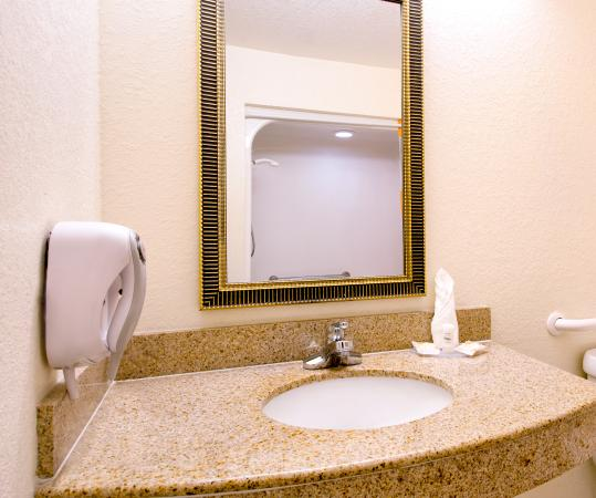 La Quinta Inn & Suites St. Petersburg Northeast: ADA Vanity