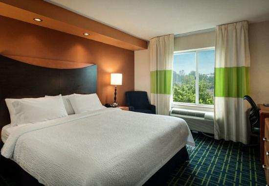 Fairfield Inn & Suites by Marriott at Hartford Airport: King Guest Room