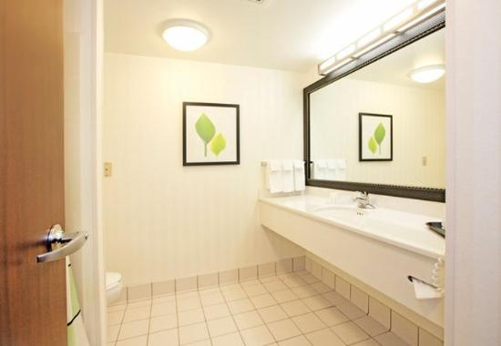 New Stanton, PA: Executive King Suite Bathroom