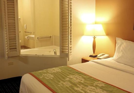 Saint Charles, IL: Spa King Suite