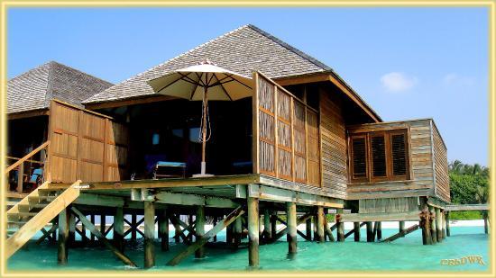 Veligandu Island Resort & Spa: Der Bungalow in der Lagune, vom Wasser gesehen