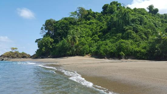 Drake Bay, Costa Rica: 20160117_121241_large.jpg