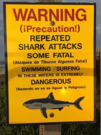 Lompoc, CA: Il cartello di pericolo di balneazione