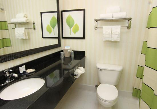 Burnsville, Μινεσότα: Suite Bathroom