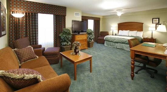 Homewood Suites Holyoke-Springfield/North: King Studio Suite