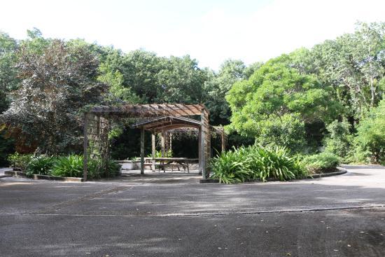 Dagny Johnson Key Largo Hammock Botanical State Park : Circle at Center of the Park with PIcnic Tables