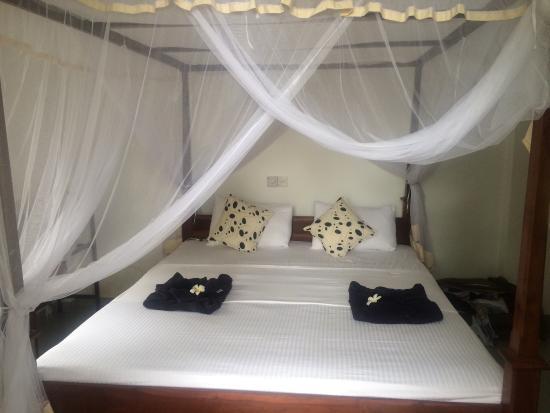 villa red lobster updated 2019 prices lodge reviews hikkaduwa rh tripadvisor com