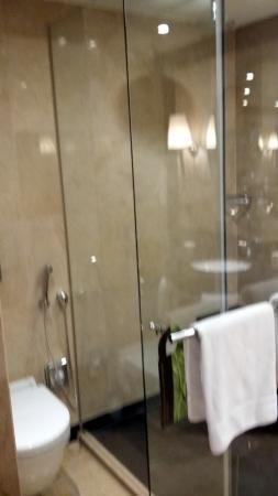 InterContinental Dusseldorf: bathroom, toilet seperated from shower by clear glass sliding door