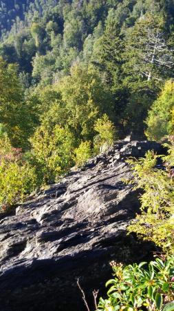 20150911 083414 large jpg picture of chimney tops trail great rh tripadvisor com