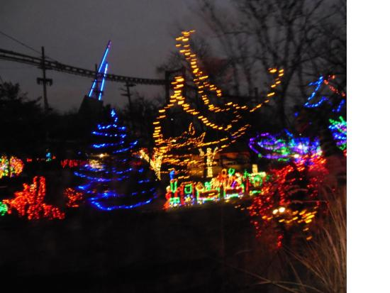 indianapolis zoo more lights at the zoo
