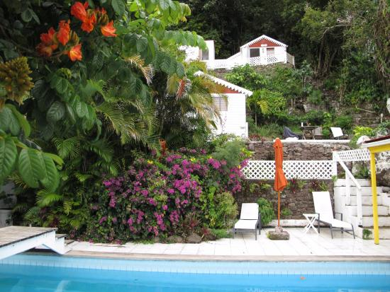 Windwardside, Isla de Saba: El momo cottage