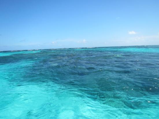 St. Vincent and the Grenadines: Horseshoe reef