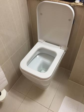 Park International Hotel: square toilet!?