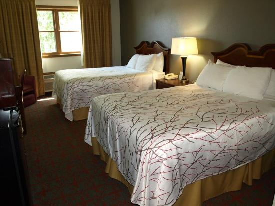 Harbor Winds : Newly Renovated Two Double bedroom