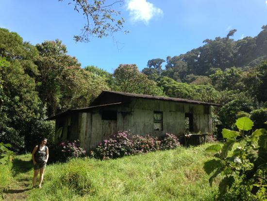 Sendero Los Quetzales (The Quetzales Trail): Old dwelling along trail