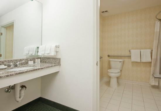 Palmdale, CA: Accessible Suite Bathroom