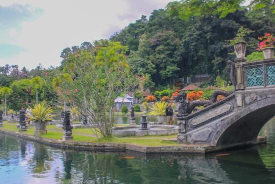 Tirta Gangga: Тирта Гангга. О нашем путешествии по Бали читайте http://rusnomad.com/index.php/strany-i-goroda/