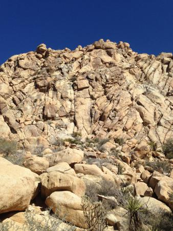 Joshua Tree, CA: Our 4 pitch route, Wilson's Irregular