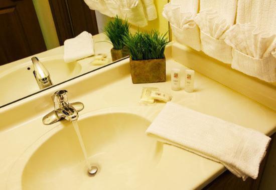 Livonia, ميتشجان: Guest Bathroom