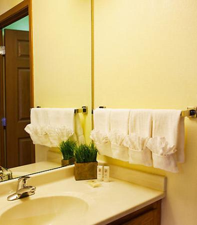 Sterling Heights, Μίσιγκαν: Suite Bathroom