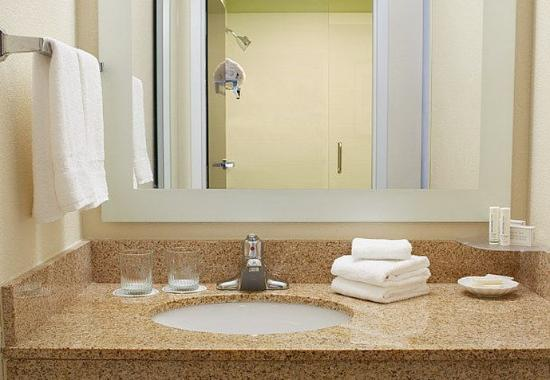 Lithia Springs, Gürcistan: Suite Bathroom