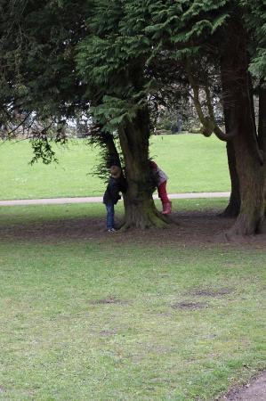 Telford, UK: в парке