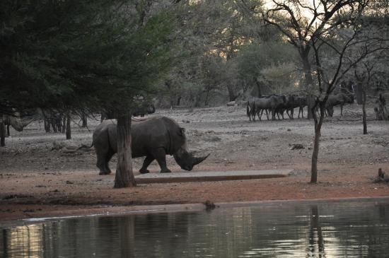 Омаруру, Намибия: Bei Sonnenuntergang
