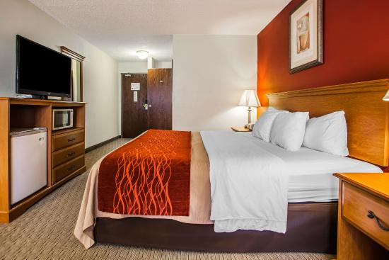 Fort Dodge, IA: Guest Room