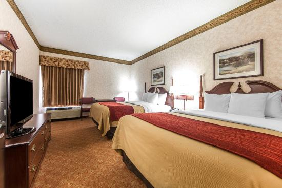 Lenoir City, TN: Guest Room