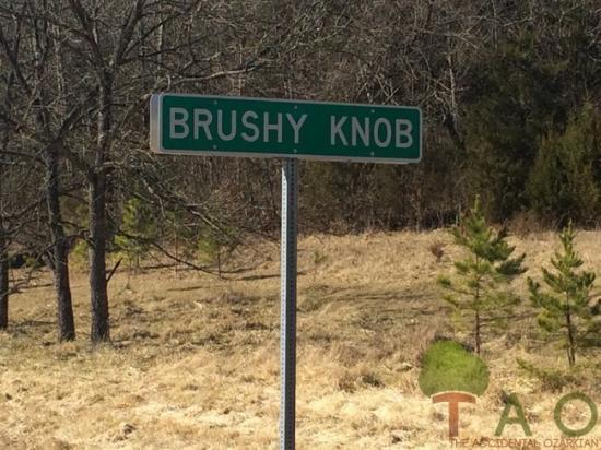 แอวา, มิสซูรี่: Coming soon at ozarkian.com: in search of Ozarkian knobs! We began our search at Brushy Knob, MO