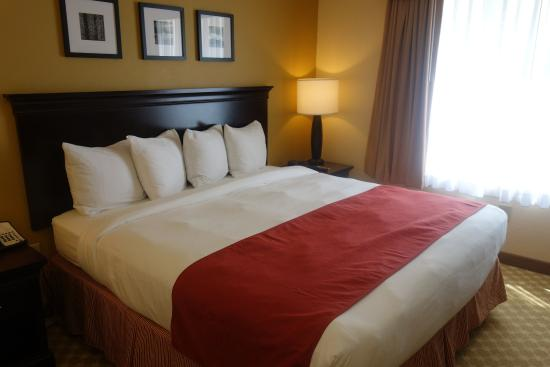 Cayce, Carolina del Sur: Other Hotel Services/Amenities