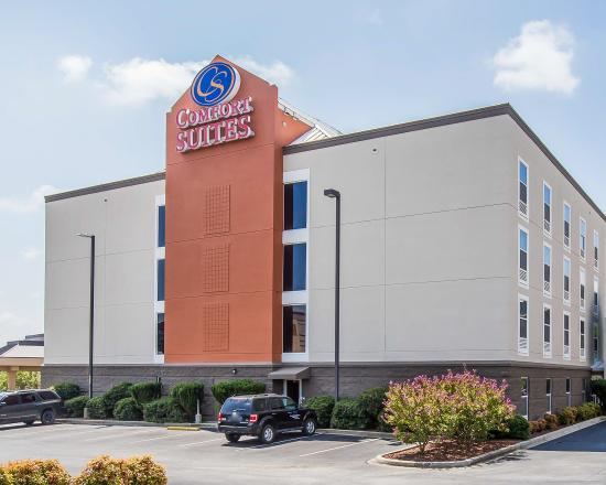Photo of Comfort Suites Anderson