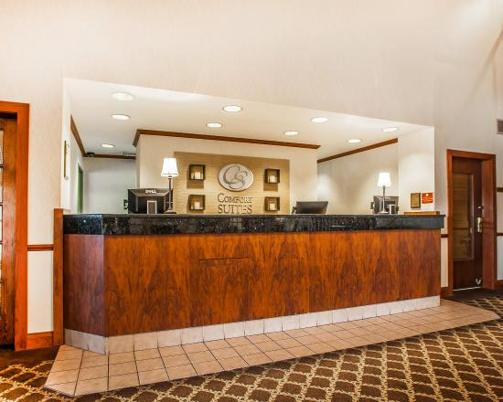 Comfort Suites Milwaukee Airport: Lobby