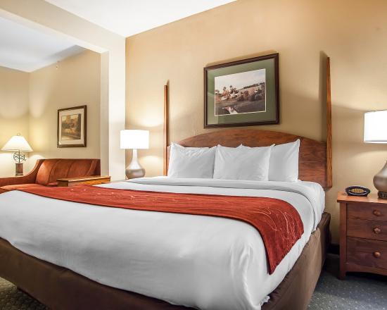 Comfort Suites Milwaukee Airport: Guest Room