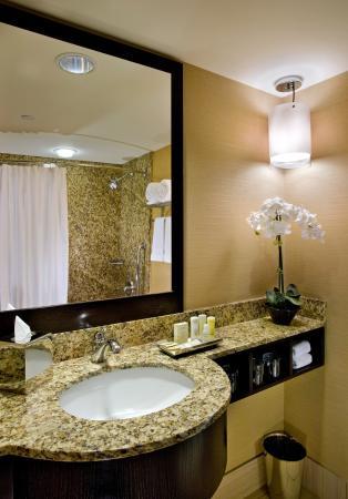 Glen Ellyn, IL: Guest Bath